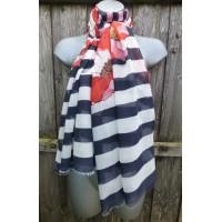 Striped Poppy