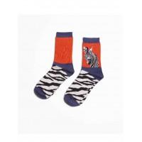 Socks (4-7) - Wild Zebra-19016 - Orange