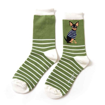 Socks (4-7) - Chihuahua Stripes - SKS171