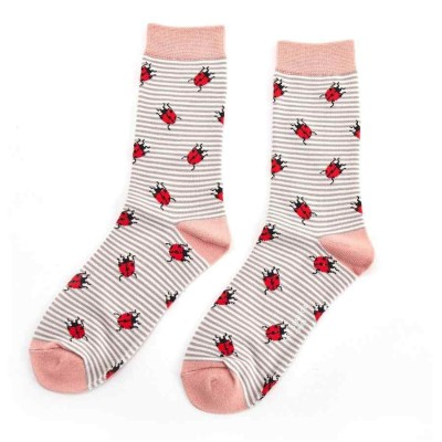 Socks (4-7) - Ladybirds-SKS146 - Grey
