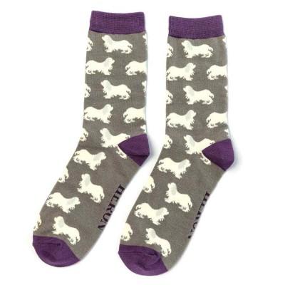 Socks (7-11) - Cavalier King Charles Spaniels - MH181 (Grey)