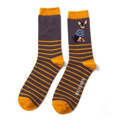 Socks (7-11) - Chihuahua Stripes - MH144 (Grey)